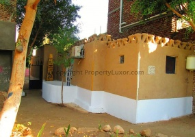 W0111 - Traditional house for longterm in El Gezira - Building