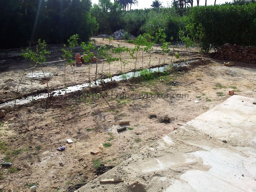 W0118 - House for sale in West Bank in El Ramla - Garden