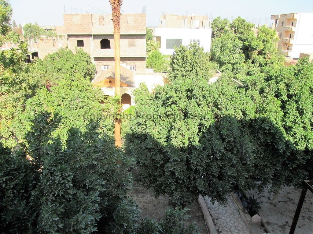W0119b - View on the Valley of the Kings in Gabawy - Garden