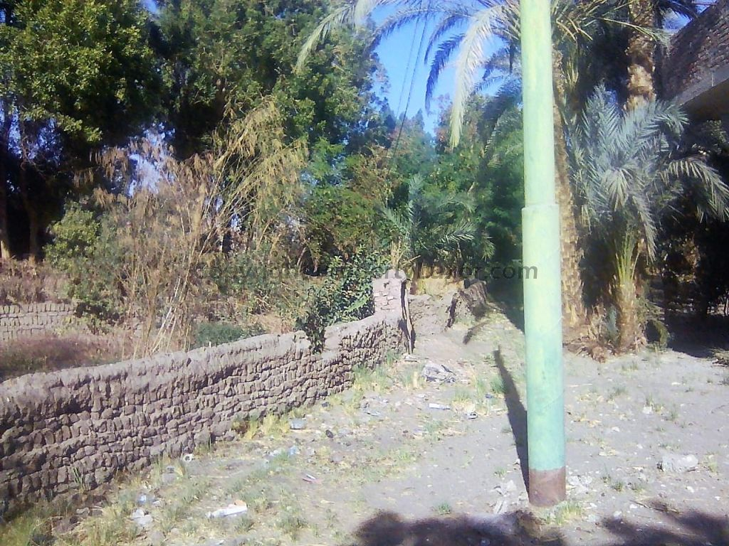W0120 - Building Land on West Bank in Malkata - Land